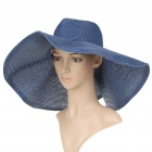 Straw Woven Sun Floppy Wide Brim Hat Blue (Hats Category)