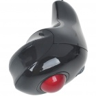 Handheld Multipurpose Trackball Mouse (Computer Mice & Presenters Category)